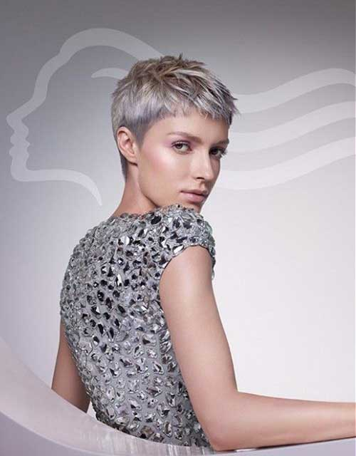 Pictures of Short Grey Hair Cuts