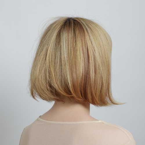 Highlights for Short Hair-15