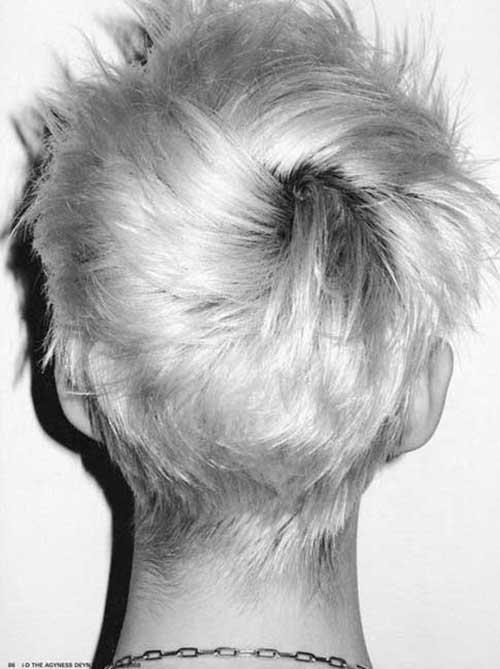14.Pixie Hair Back View
