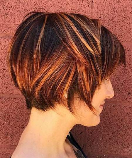 Pixie Bob Layered Highlights