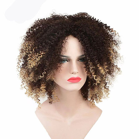 Curly Afro Wig Hair