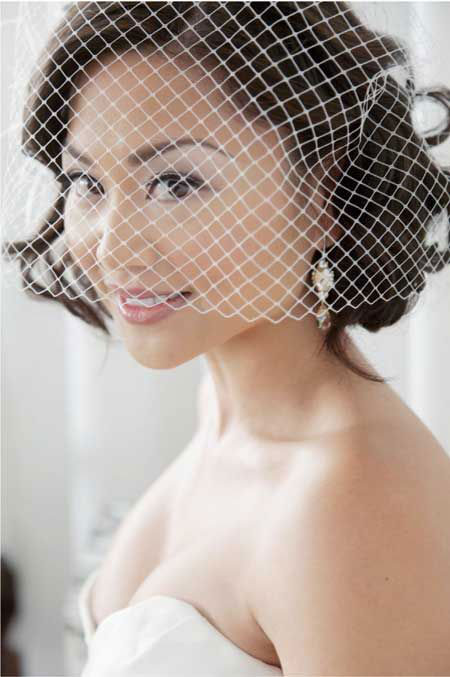 Wedding Bridal Birdcage Veil