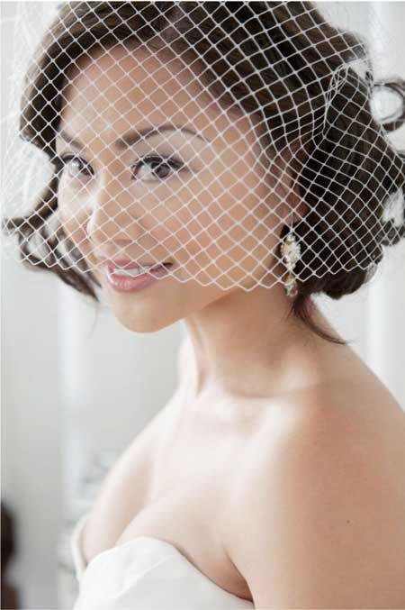 Wedding Bridal Birdcage Veil