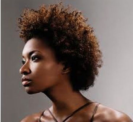Natural Hair Styles Black