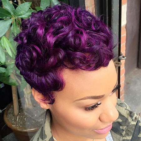 Short Hair Purple American
